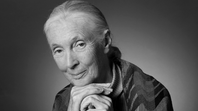 Jane-Goodall-1109__065_bw_r