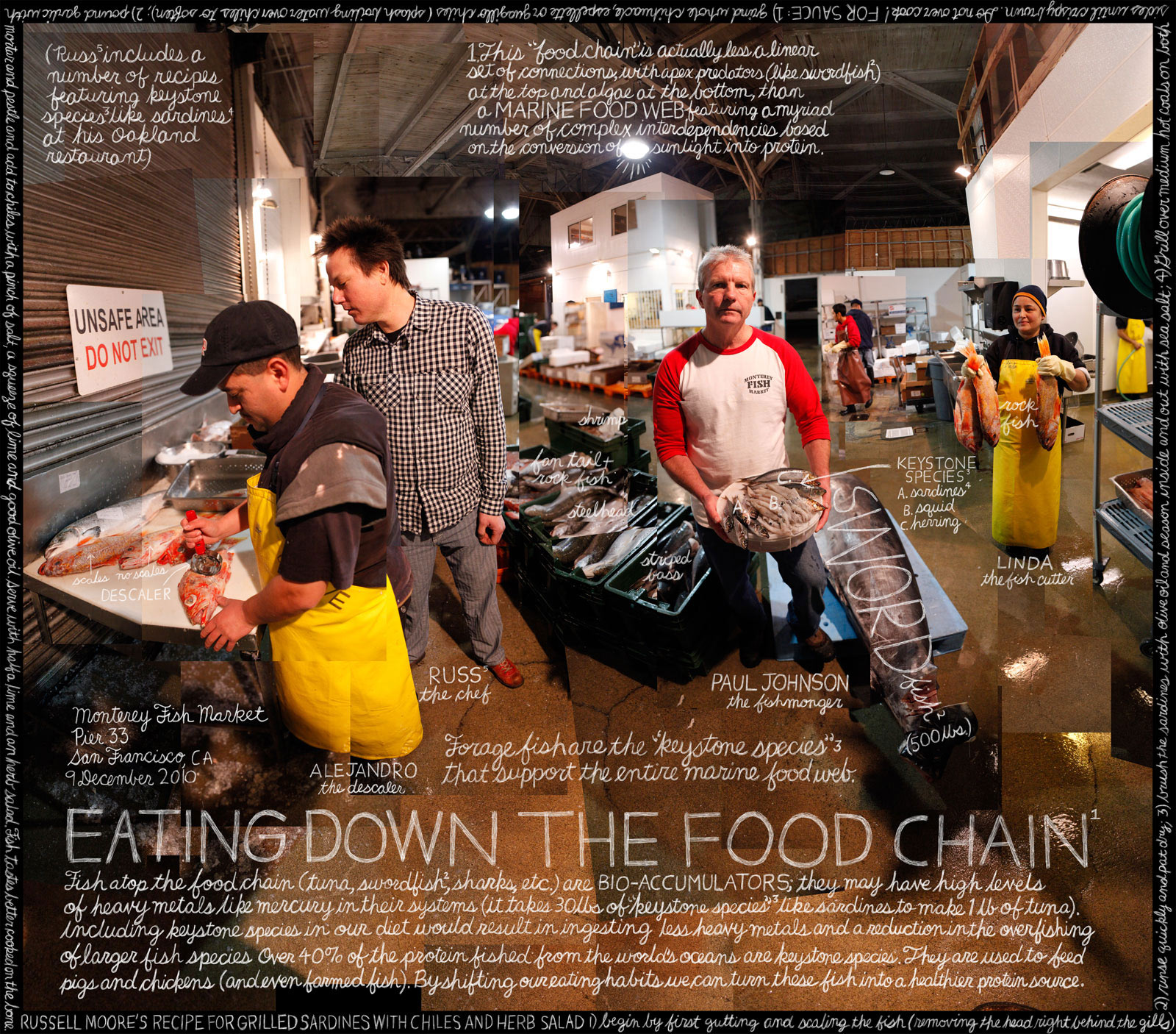 Paul Johnson, Monterey Fish Market. San Francisco, CA. Credit: Information artwork by Douglas Gayeton. From the Lexicon of Sustainability project.