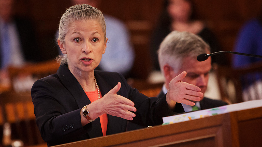 Deborah Goldberg argues before the Court of Appeals on June 3, 2014. (Photo: Chris Jordan-Bloch/Earthjustice)
