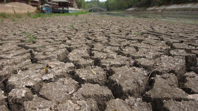 View of the cracked bed of the nearly dried-up Qingni River during a drought in Xuchang city, central Chinas Henan province, 29 July 2014. The worst drought since 1951 hit central Chinas Henan province. About 245,000 people face shortages of drinking water, while 1.54 million hectares of grain due to be harvested in the autumn are suffering from the drought. More than half of Henan is suffering serious problems with 20 percent of the land area rated extremely dry. More than 50 percent of the provinces small to medium rivers and 35 percent of its small reservoirs have dried up.