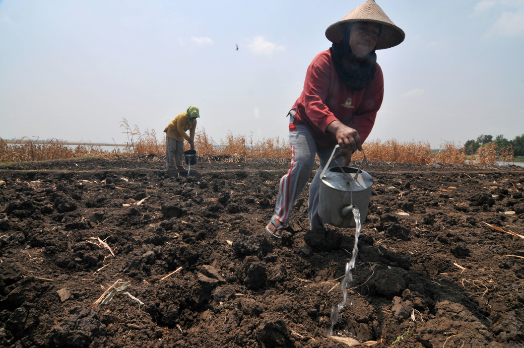 A farmer pours water on dry land during the preparation for planting corn in Boyolali, Central Java, Indonesia, on Aug. 29, 2014. The 2014 drought is potentially drier and longer than the previous year. The cause is El Nino, the phenomenon of rising sea surface temperatures in the Pacific Ocean that affects the formation of clouds and precipitation in various regions, including Indonesia. (Photo by Agoes Rudianto/NurPhoto/Sipa USA)
