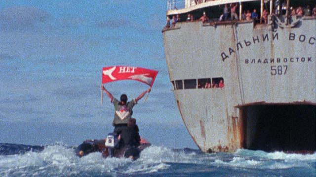 Rex Weyler approaches the Russian whaling mother ship, 1976  (Film still, Greenpeace International Film Archive)