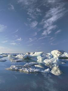 Sea ice along the Beaufort Sea coast, July 2002. Photograph by Subhankar Banerjee.