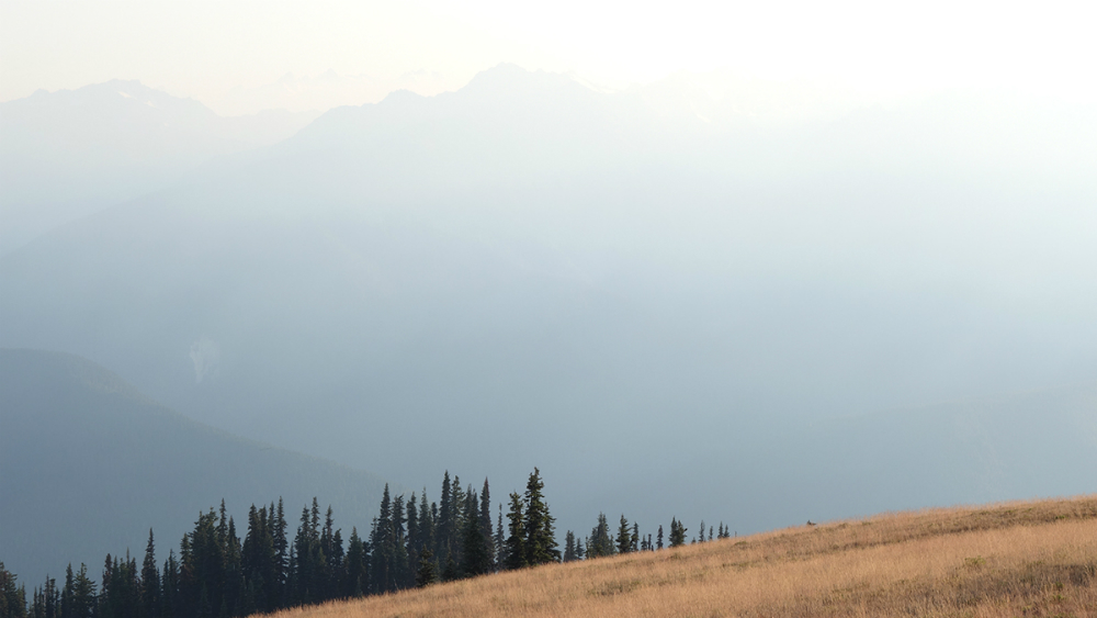 Smoke from Paradise Fire obscures the iconic view of the Olympic Mountains, July 19, 2015.
