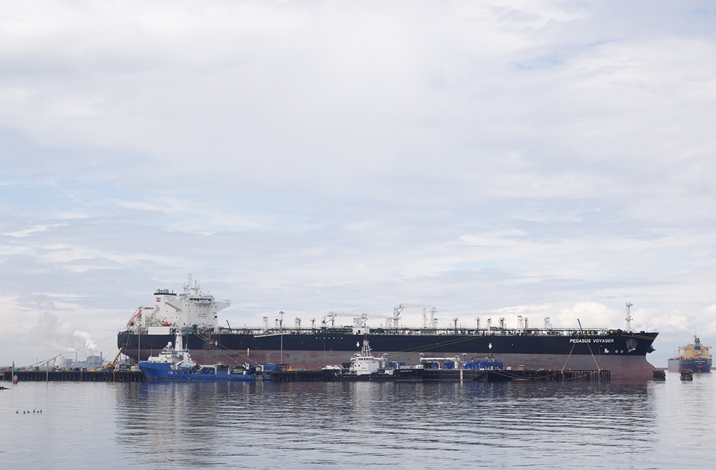 The Chevron oil tanker Pegasus Voyager moored in Port Angeles Harbor (with Geese), July 2015.