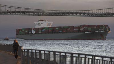 Container ship under Verrazano Narrows Bridge