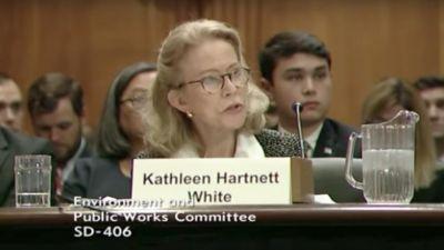Kathleen Hartnett White testifies at her Senate confirmation hearing on Wednesday, Nov. 8, 2017. (Screen grab from YouTube)